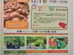 第2回農業体験