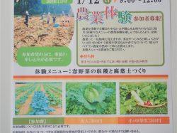 第3回農業体験