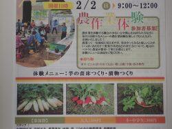 第4回農業体験:2月2日9時~12時